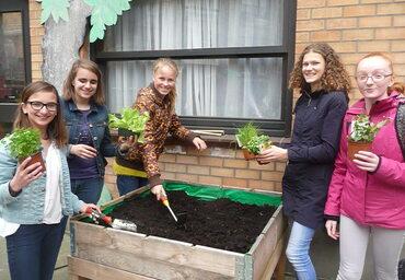 Groene school